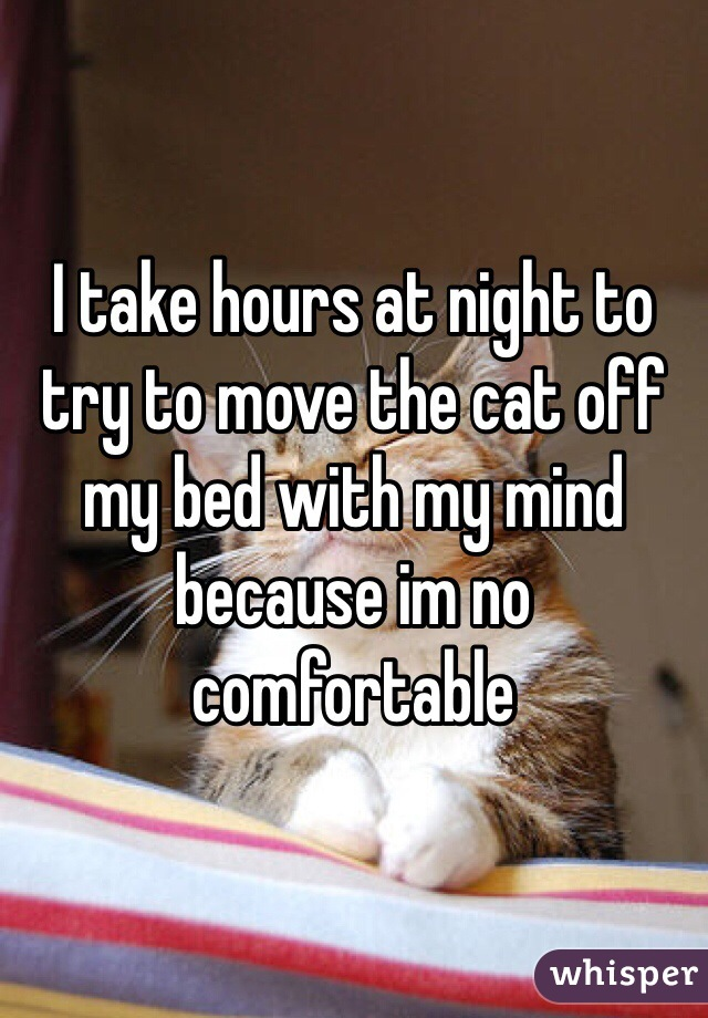 I take hours at night to try to move the cat off my bed with my mind because im no comfortable