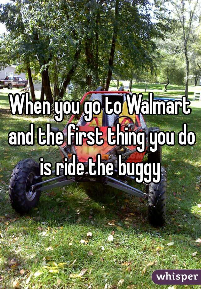 When you go to Walmart and the first thing you do is ride the buggy