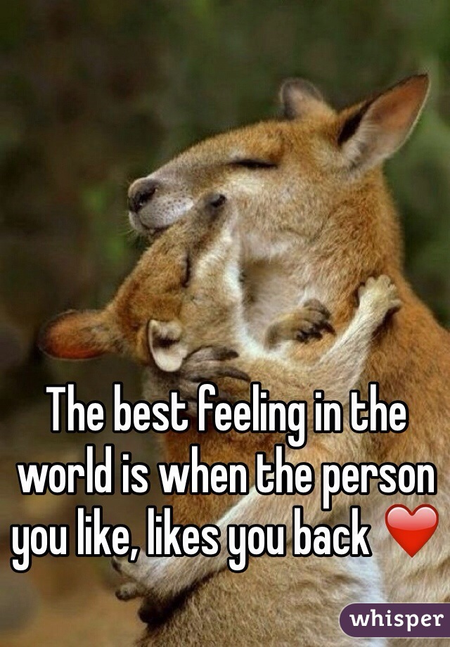 The best feeling in the world is when the person you like, likes you back ❤️