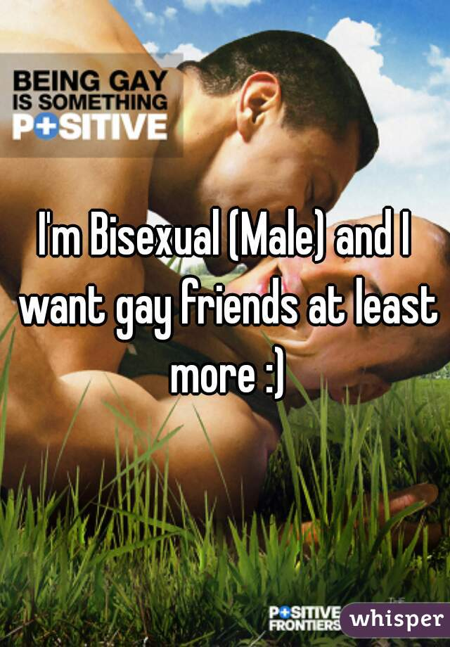 I'm Bisexual (Male) and I want gay friends at least more :)