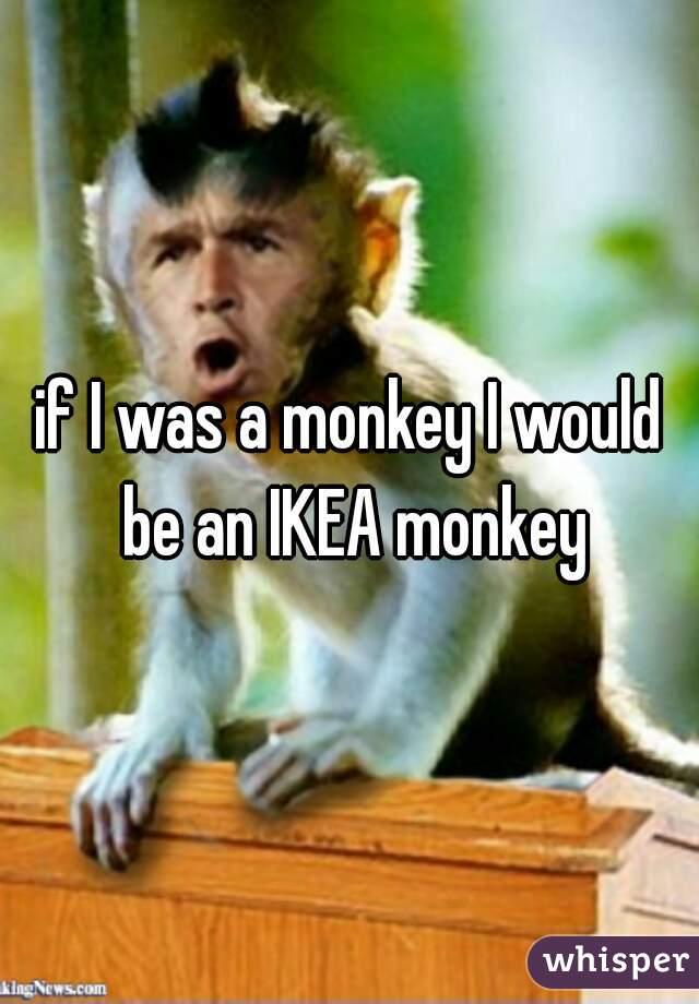 if I was a monkey I would be an IKEA monkey