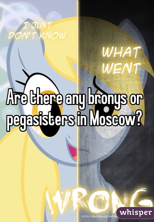 Are there any bronys or pegasisters in Moscow?