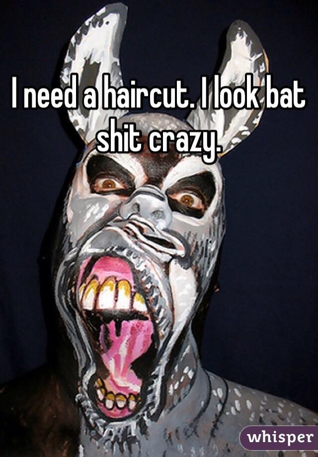 I need a haircut. I look bat shit crazy.