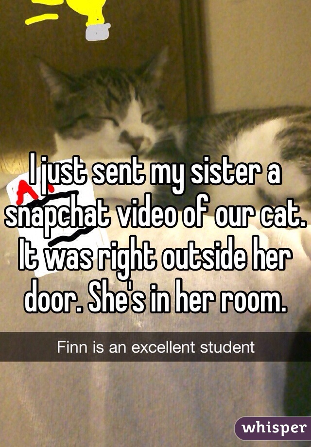 I just sent my sister a snapchat video of our cat. It was right outside her door. She's in her room.