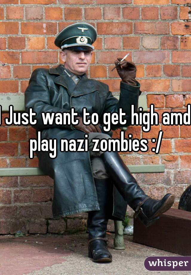 I Just want to get high amd play nazi zombies :/