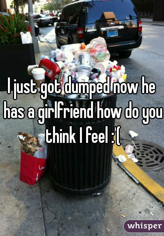 I just got dumped now he has a girlfriend how do you think I feel :'(