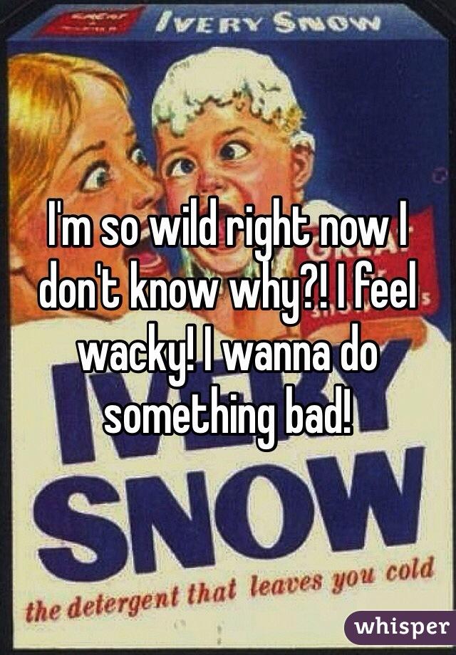 I'm so wild right now I don't know why?! I feel wacky! I wanna do something bad!