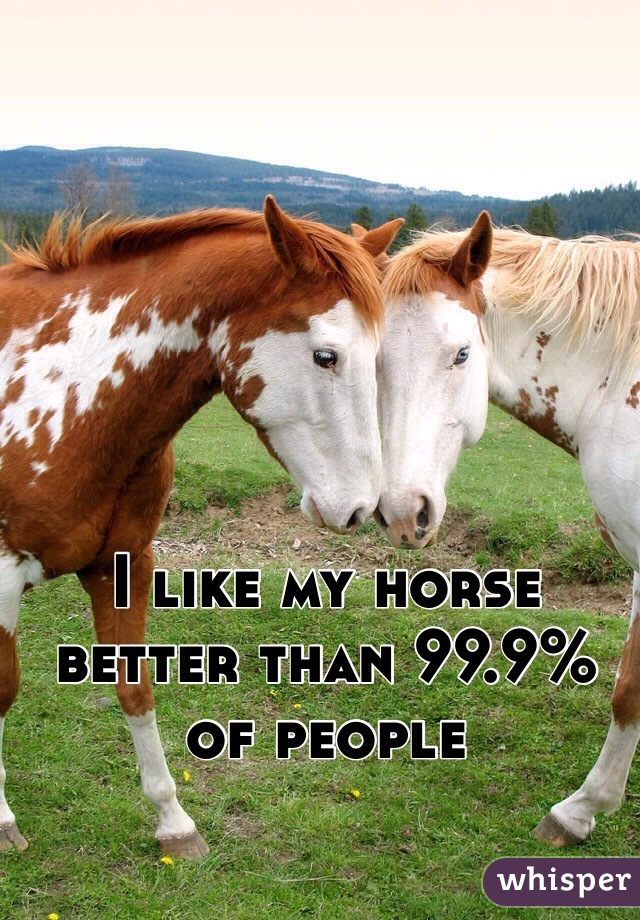 I like my horse better than 99.9% of people