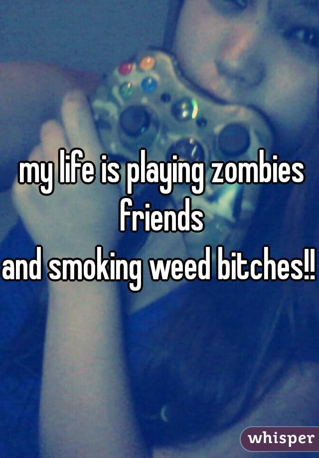 my life is playing zombies friends and smoking weed bitches!!