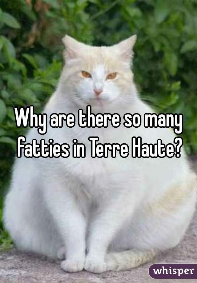 Why are there so many fatties in Terre Haute?