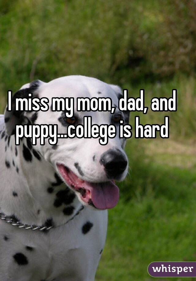 I miss my mom, dad, and puppy...college is hard