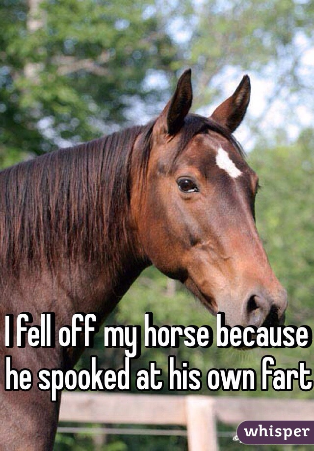 I fell off my horse because he spooked at his own fart