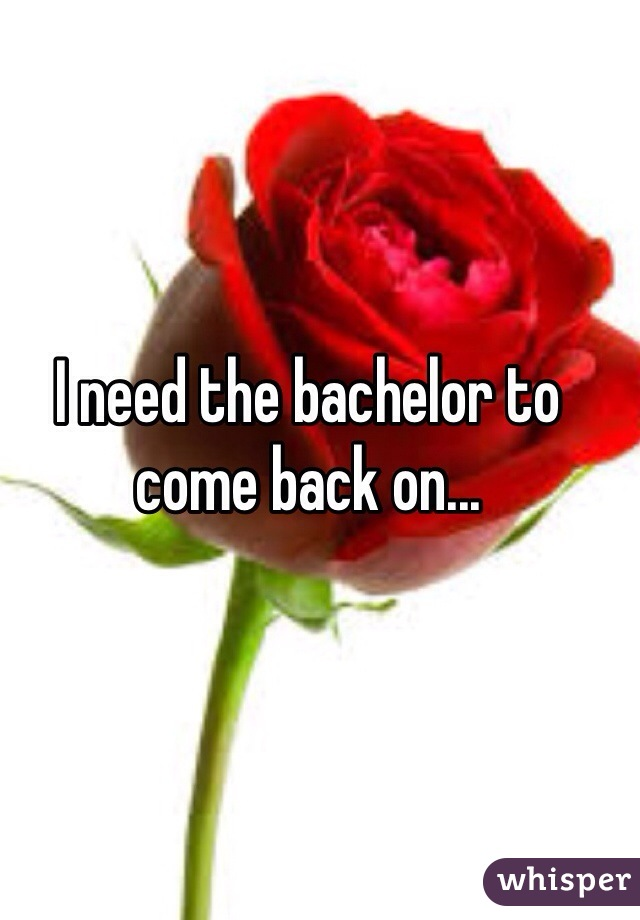 I need the bachelor to come back on...
