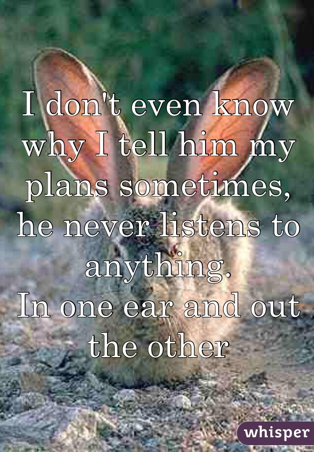 I don't even know why I tell him my plans sometimes, he never listens to anything. In one ear and out the other