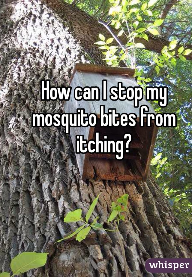 How can I stop my mosquito bites from itching?
