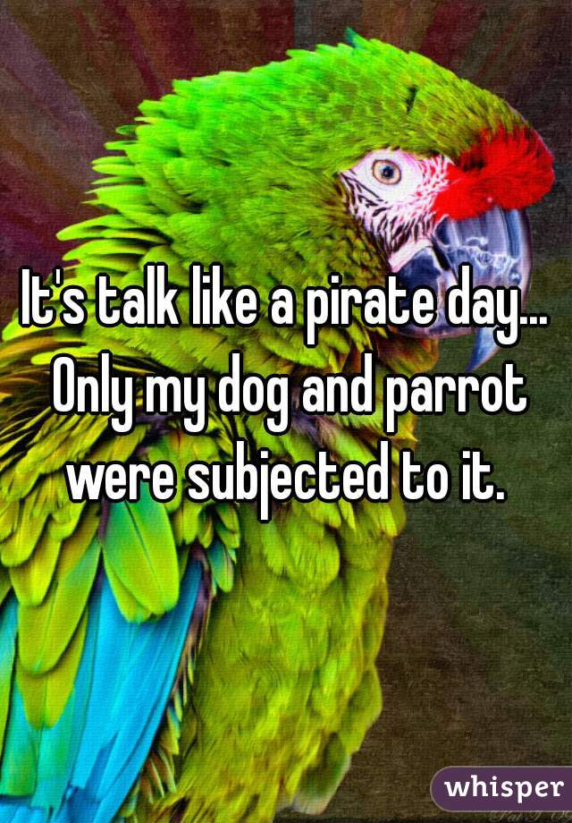 It's talk like a pirate day... Only my dog and parrot were subjected to it.