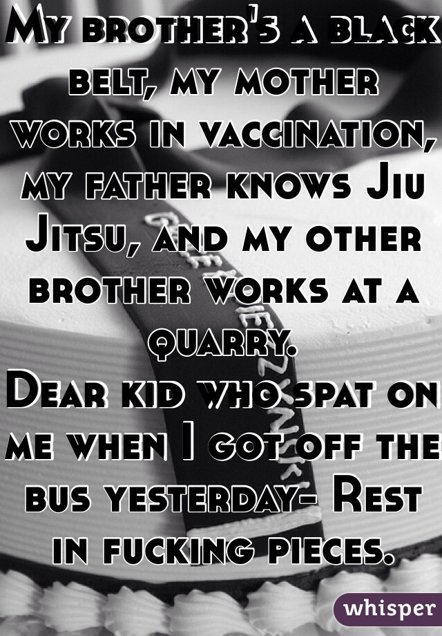 My brother's a black belt, my mother works in vaccination, my father knows Jiu Jitsu, and my other brother works at a quarry.  Dear kid who spat on me when I got off the bus yesterday- Rest in fucking pieces.