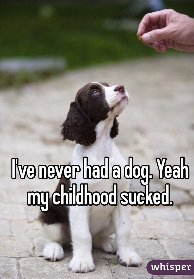 I've never had a dog. Yeah my childhood sucked.
