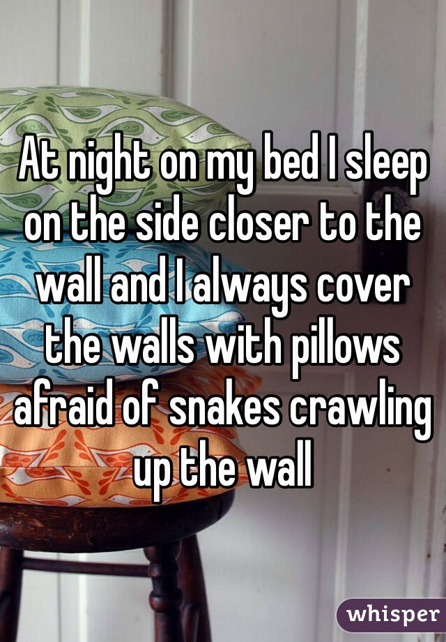 At night on my bed I sleep on the side closer to the wall and I always cover the walls with pillows afraid of snakes crawling up the wall