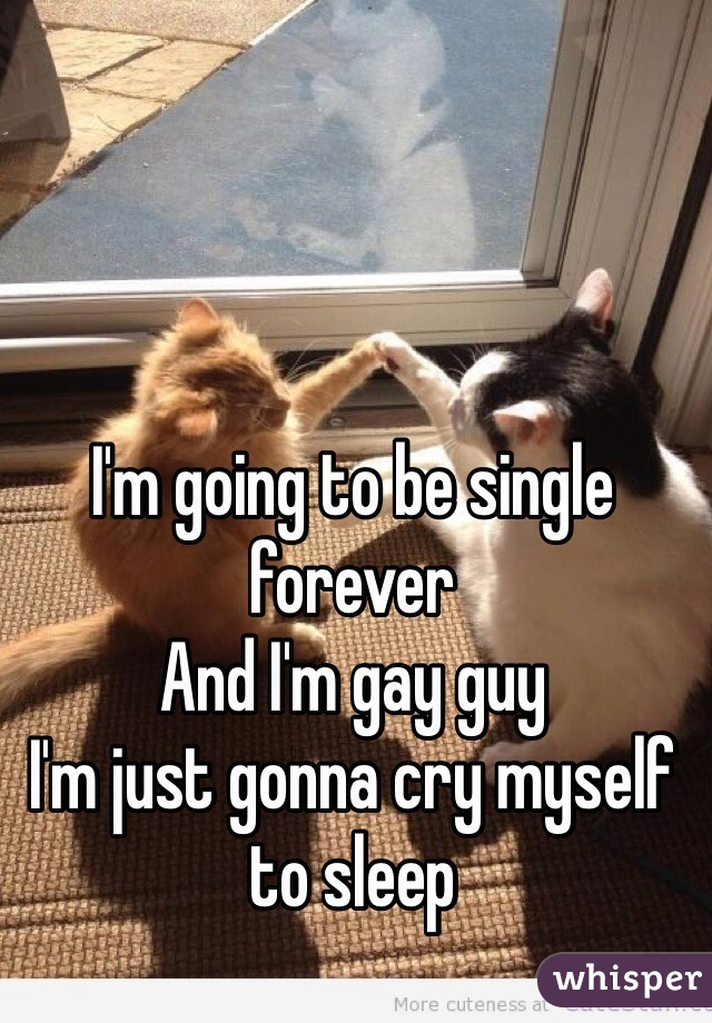 I'm going to be single forever  And I'm gay guy  I'm just gonna cry myself to sleep