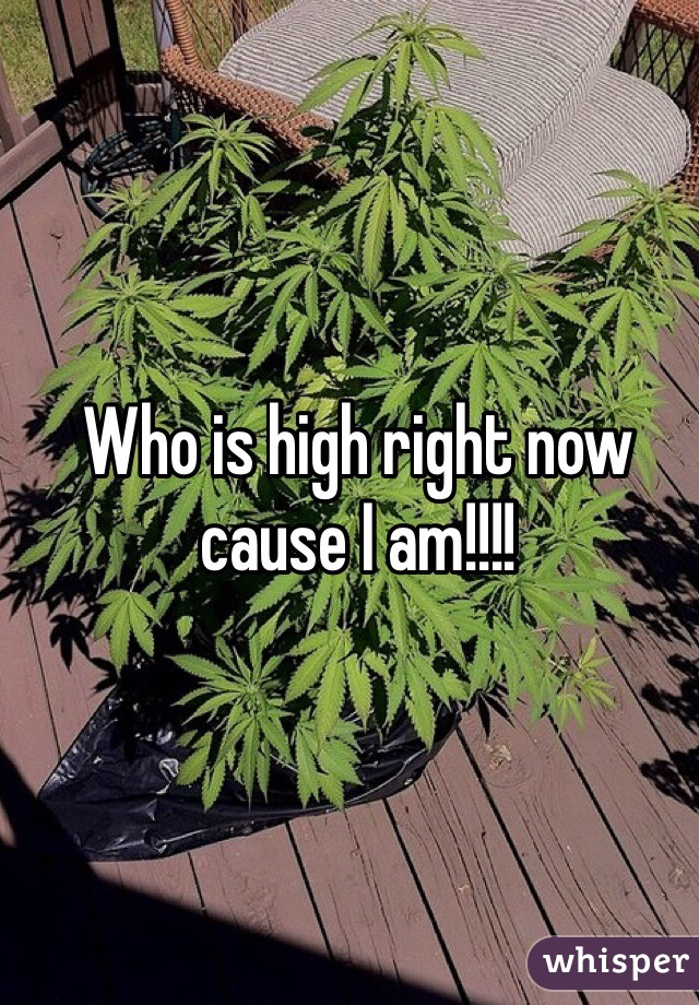 Who is high right now cause I am!!!!