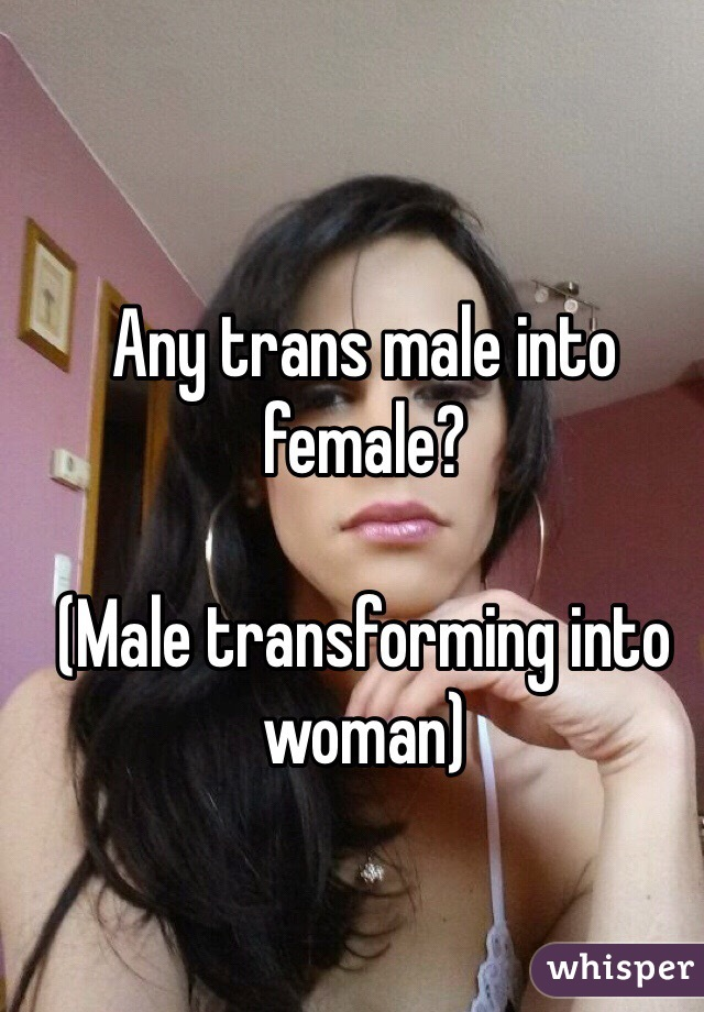 Any trans male into female?  (Male transforming into woman)