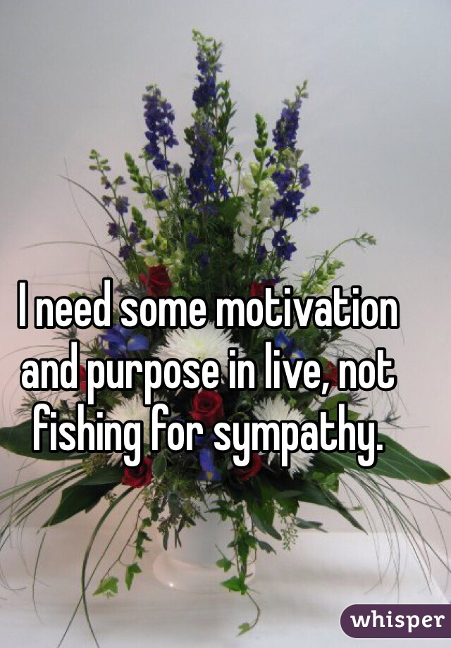 I need some motivation and purpose in live, not fishing for sympathy.