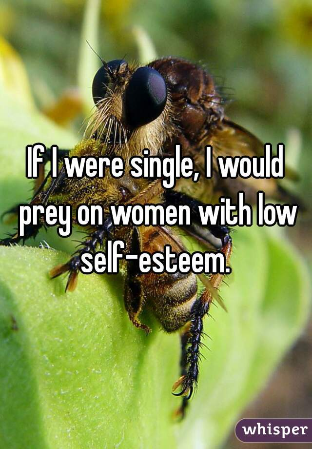 If I were single, I would prey on women with low self-esteem.