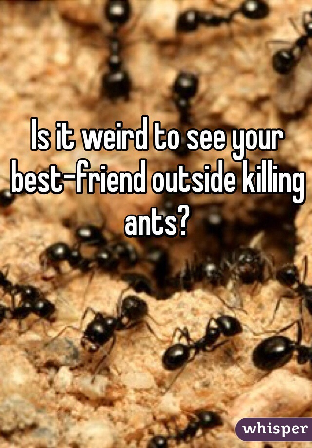 Is it weird to see your best-friend outside killing ants?