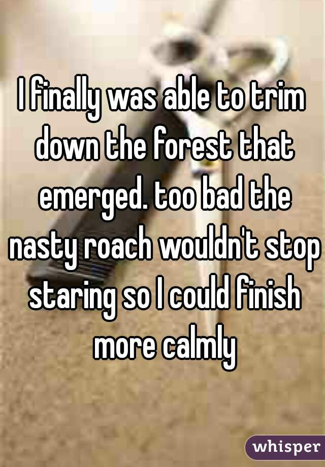 I finally was able to trim down the forest that emerged. too bad the nasty roach wouldn't stop staring so I could finish more calmly