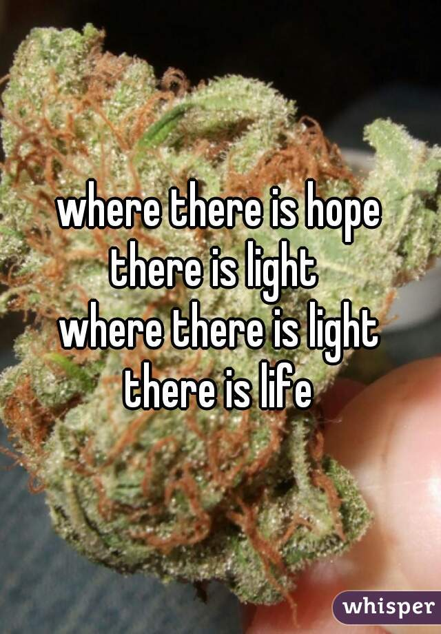 where there is hope there is light  where there is light there is life