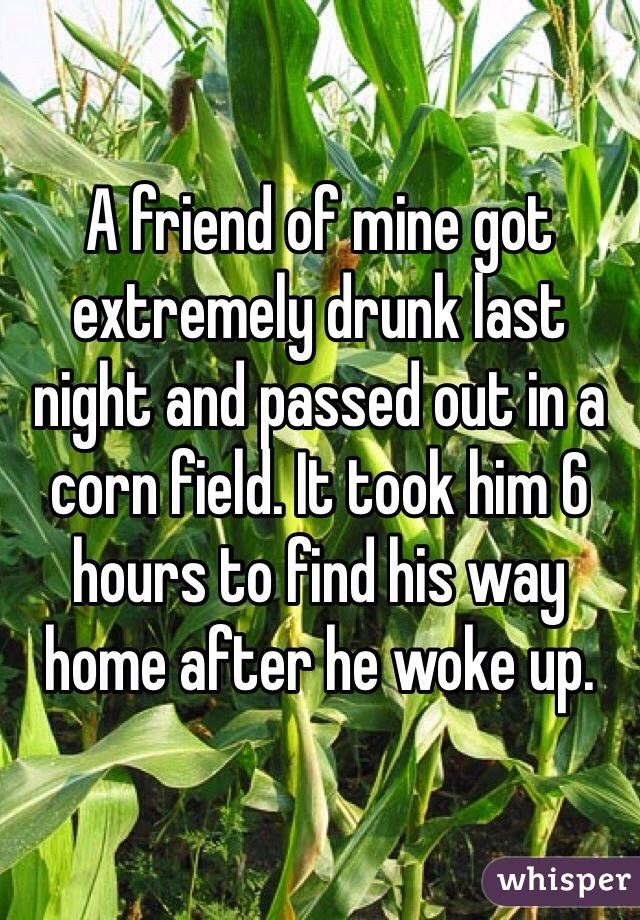 A friend of mine got extremely drunk last night and passed out in a corn field. It took him 6 hours to find his way home after he woke up.