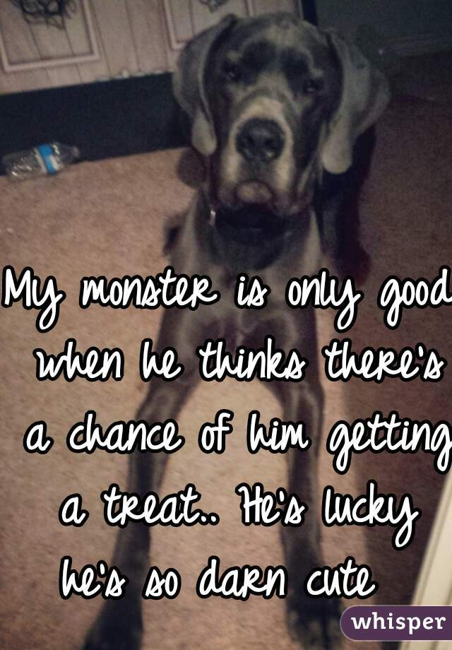 My monster is only good when he thinks there's a chance of him getting a treat.. He's lucky he's so darn cute
