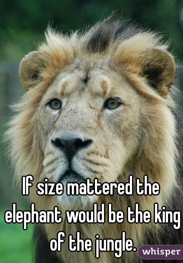 If size mattered the elephant would be the king of the jungle.