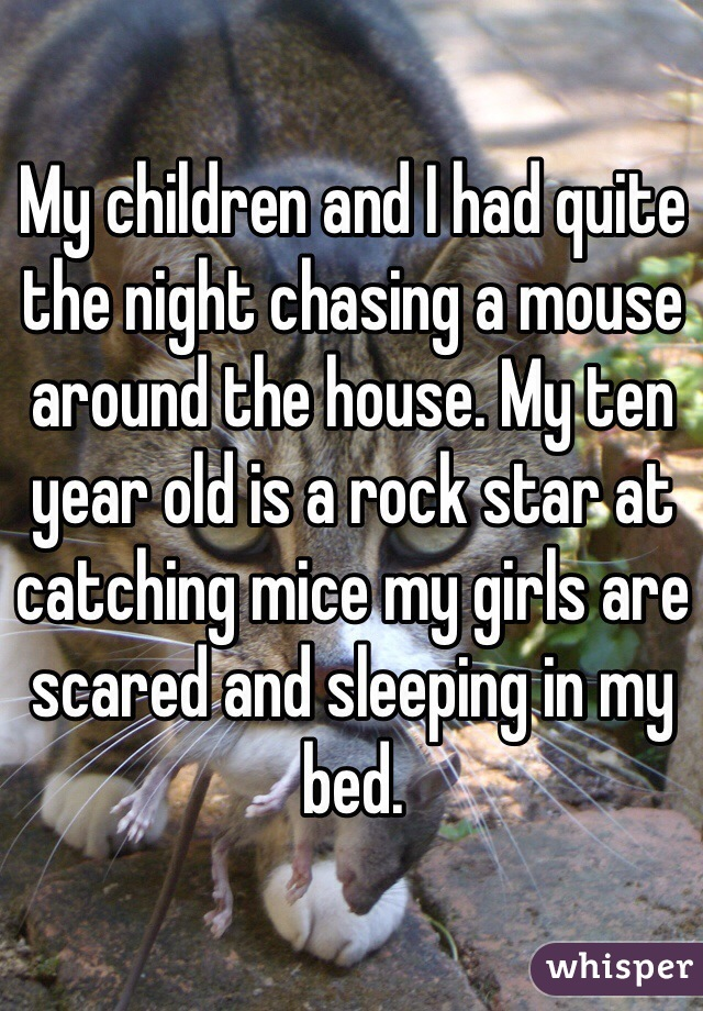 My children and I had quite the night chasing a mouse around the house. My ten year old is a rock star at catching mice my girls are scared and sleeping in my bed.