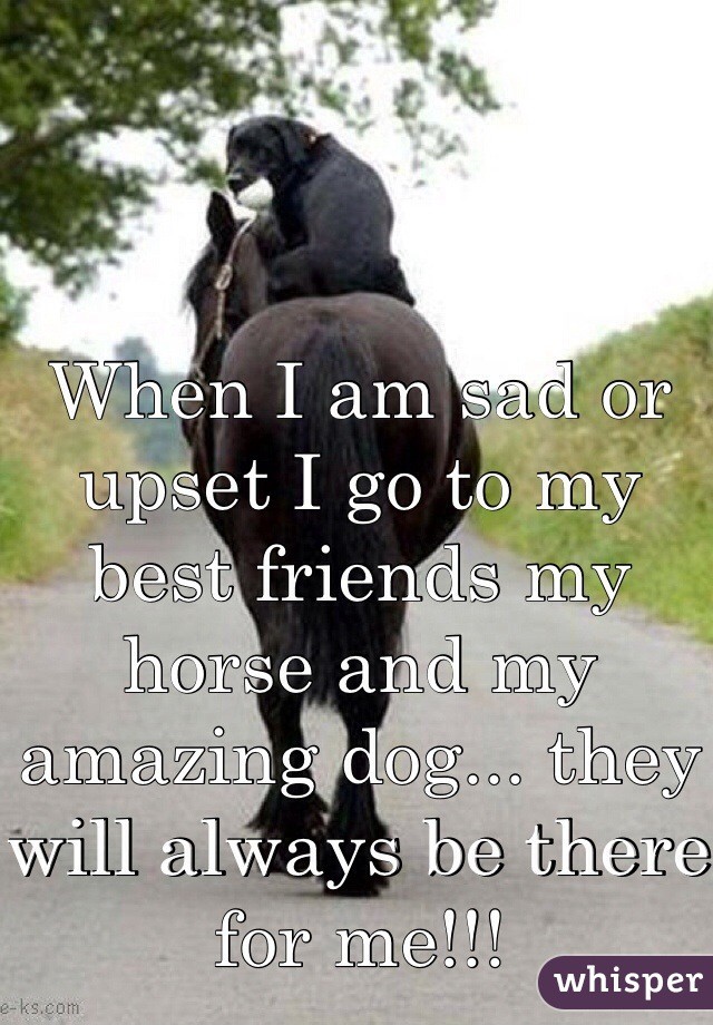 When I am sad or upset I go to my best friends my horse and my amazing dog... they will always be there for me!!!