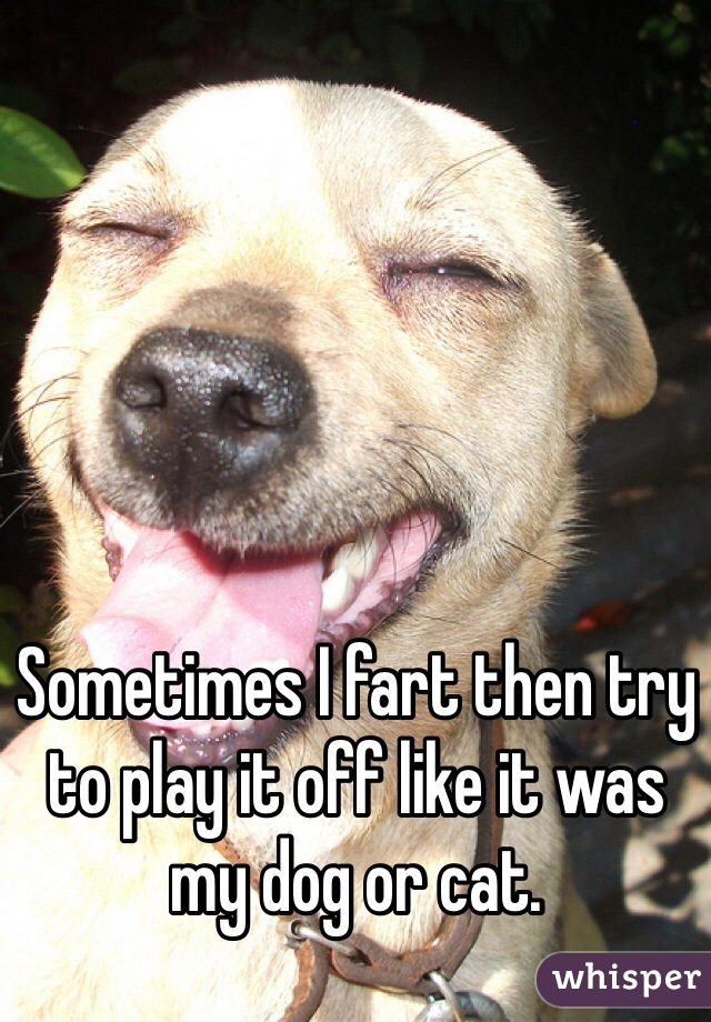 Sometimes I fart then try to play it off like it was my dog or cat.