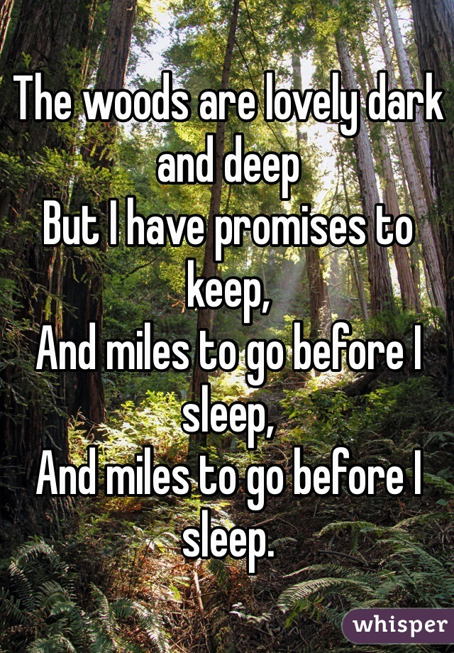 The woods are lovely dark and deep But I have promises to keep, And miles to go before I sleep, And miles to go before I sleep.