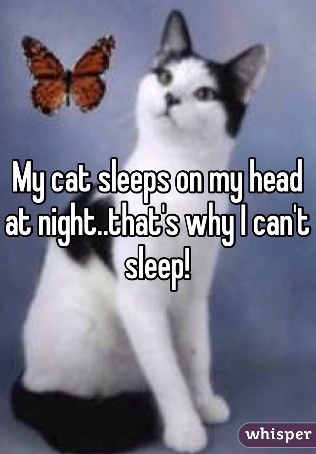 My cat sleeps on my head at night..that's why I can't sleep!
