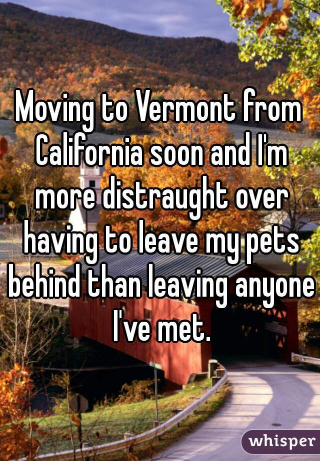 Moving to Vermont from California soon and I'm more distraught over having to leave my pets behind than leaving anyone I've met.