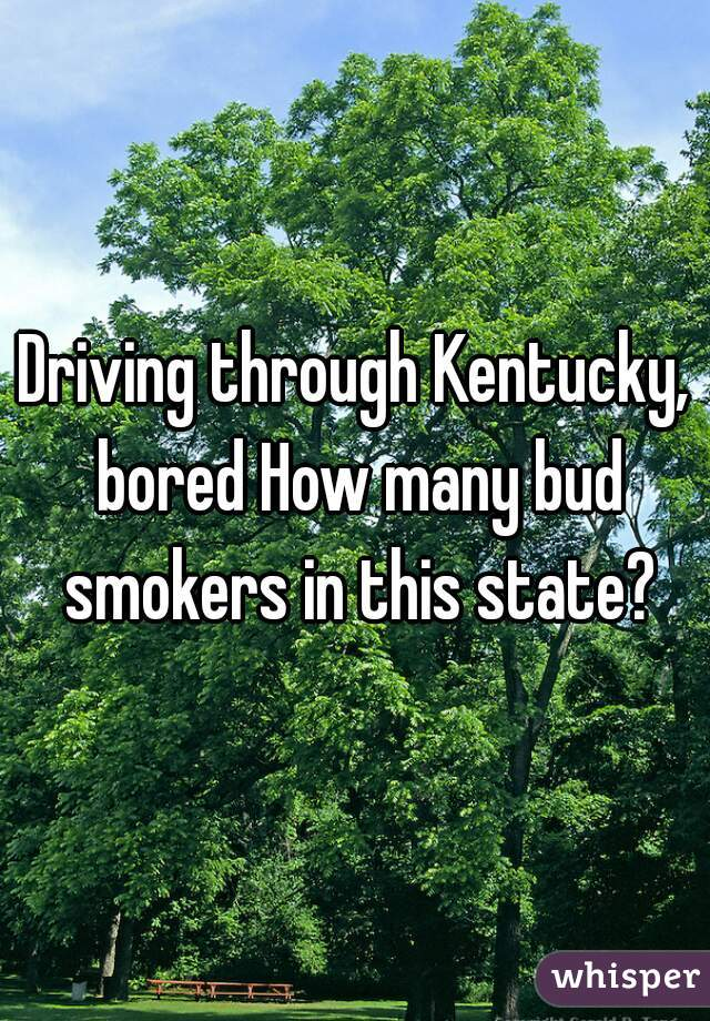 Driving through Kentucky, bored How many bud smokers in this state?