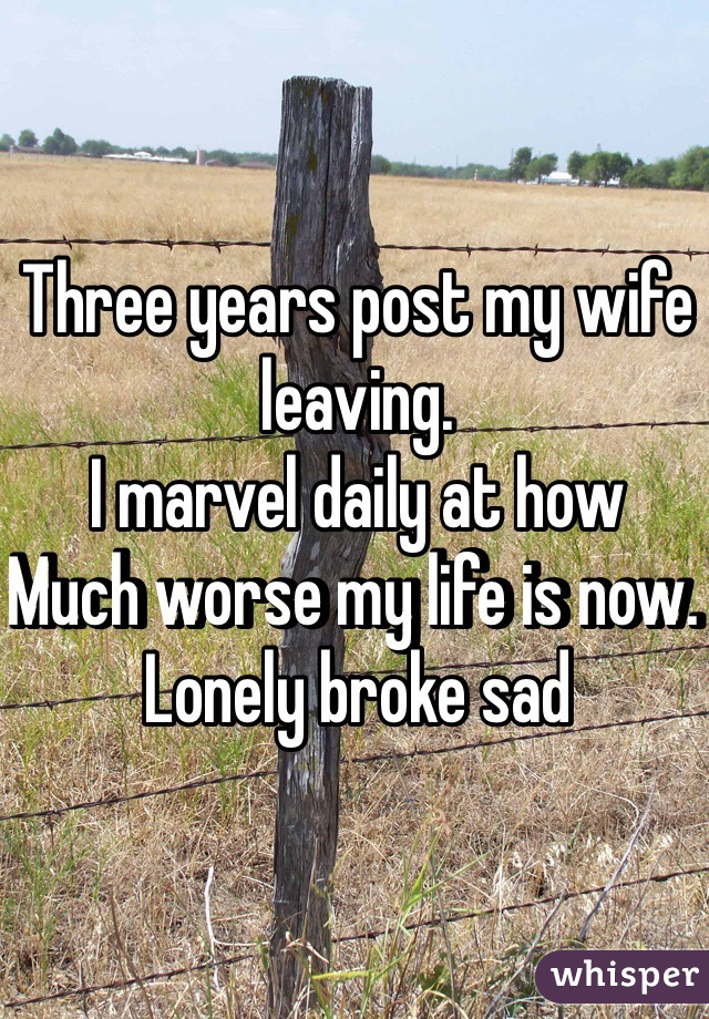 Three years post my wife leaving.  I marvel daily at how  Much worse my life is now.  Lonely broke sad