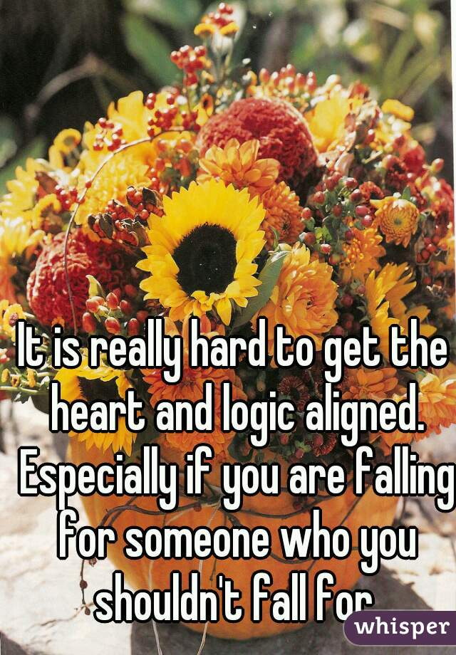 It is really hard to get the heart and logic aligned. Especially if you are falling for someone who you shouldn't fall for.