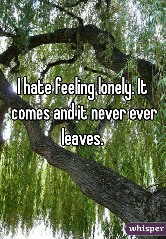 I hate feeling lonely. It comes and it never ever leaves.