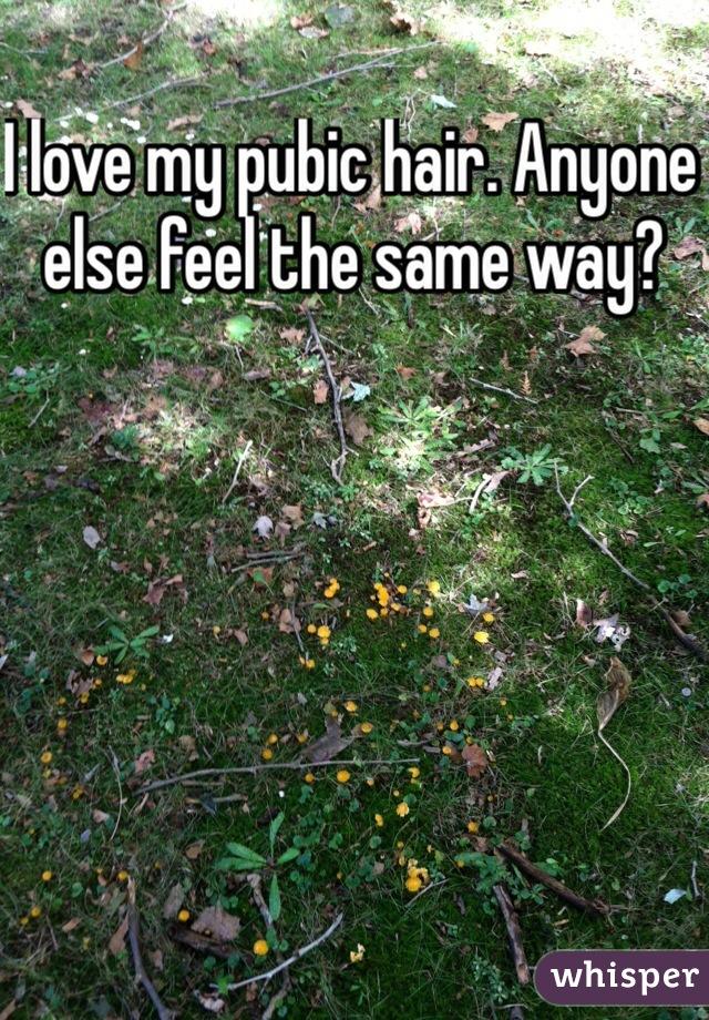 I love my pubic hair. Anyone else feel the same way?