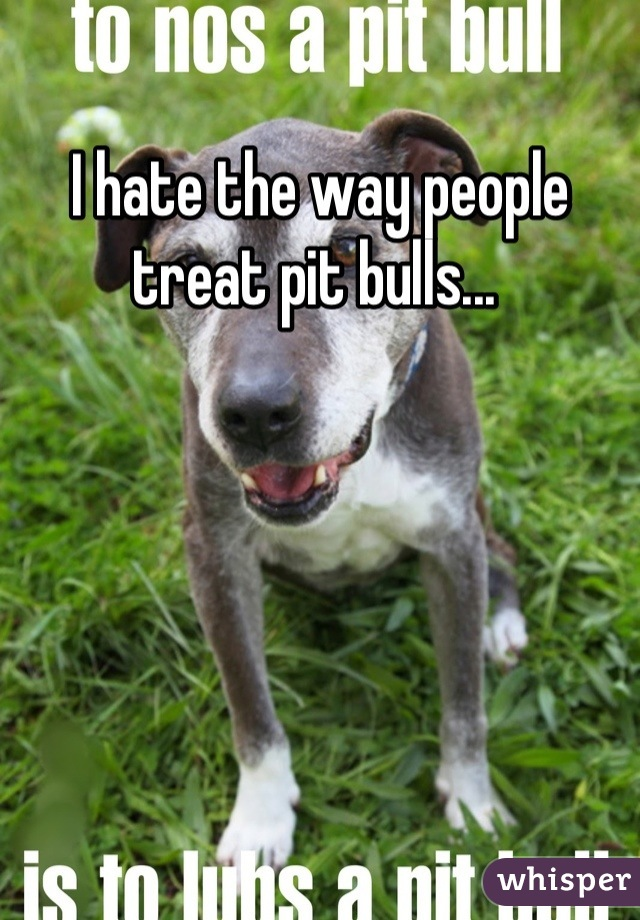 I hate the way people treat pit bulls...
