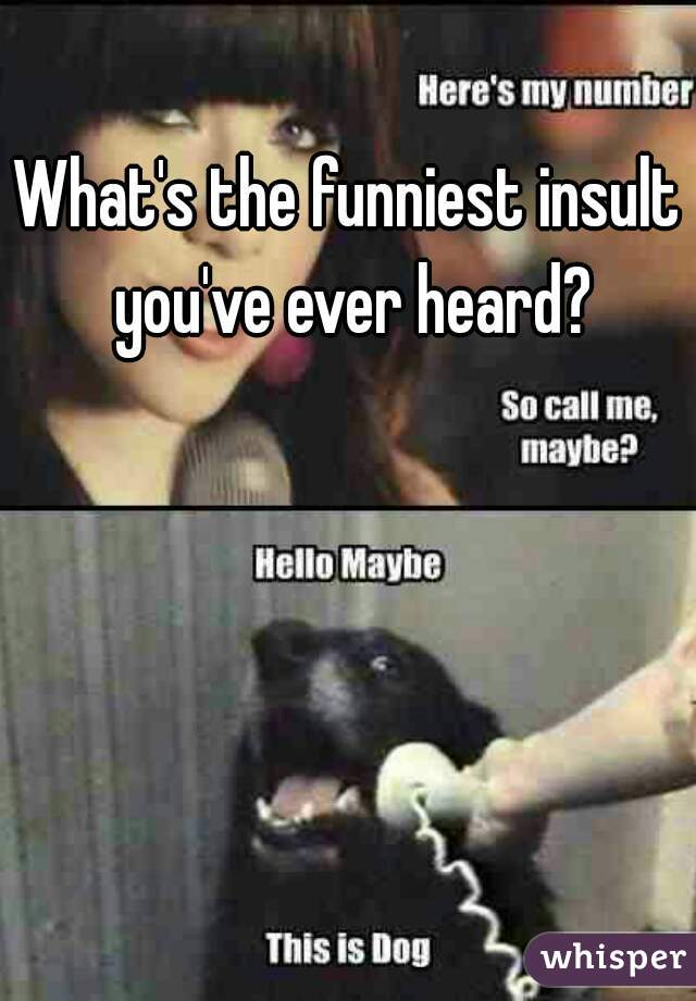 What's the funniest insult you've ever heard?