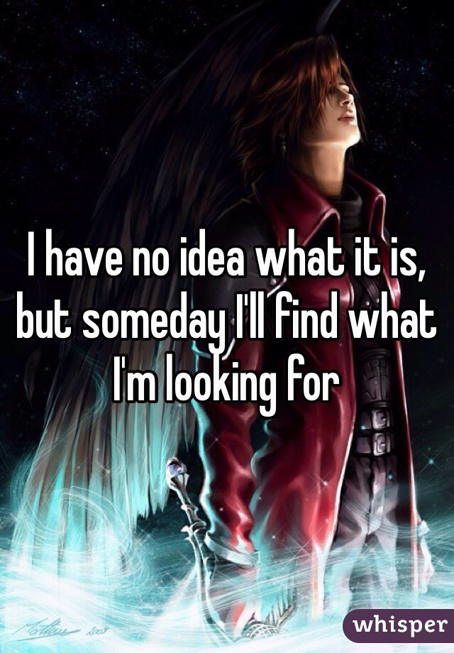 I have no idea what it is, but someday I'll find what I'm looking for