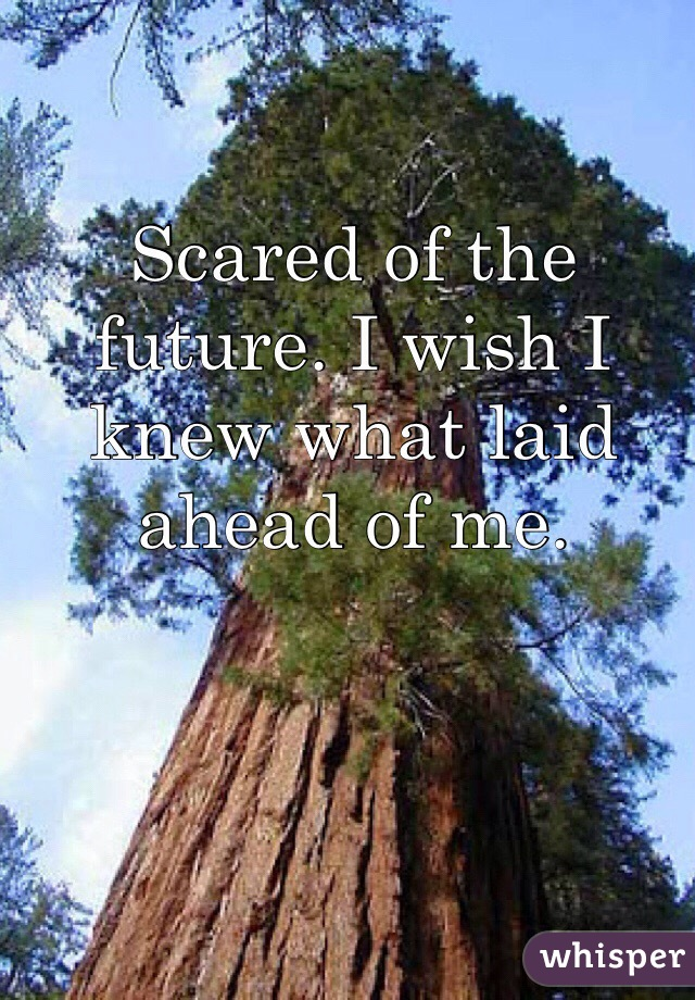 Scared of the future. I wish I knew what laid ahead of me.