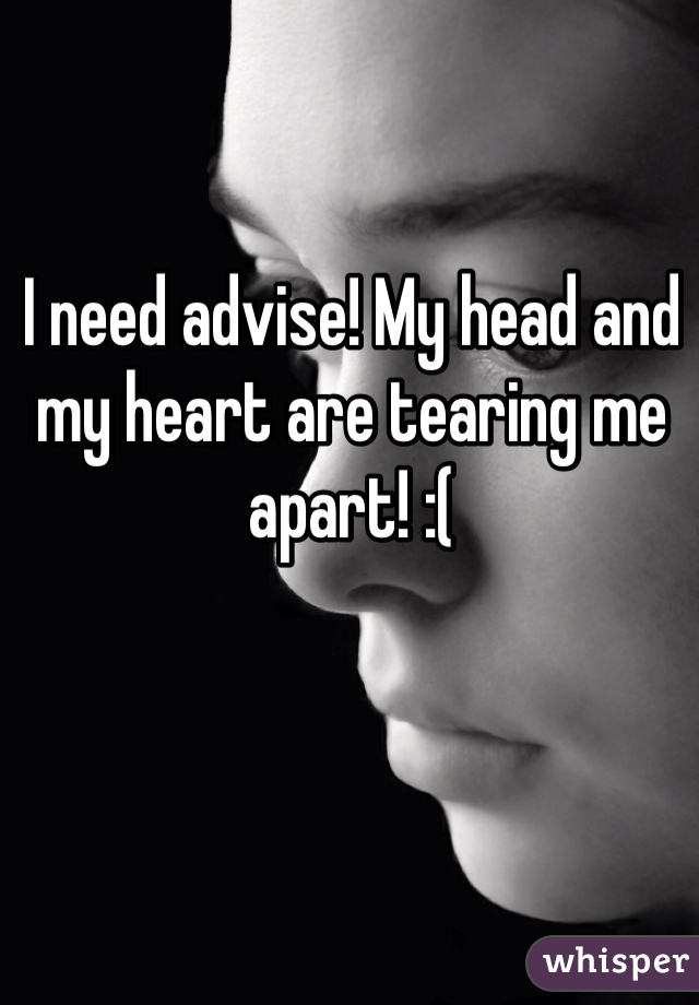 I need advise! My head and my heart are tearing me apart! :(